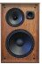 Viscount Amplified Speaker Front